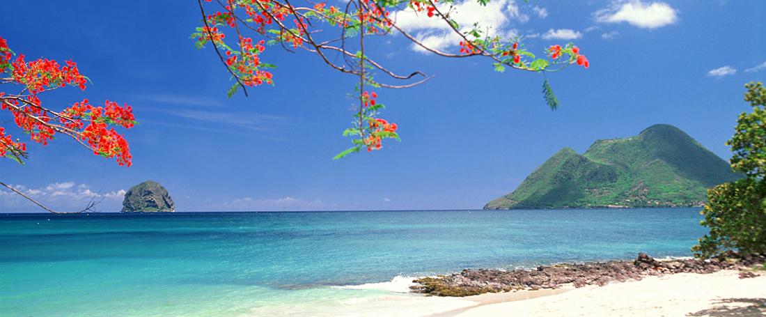 Comment louer une voiture en Martinique